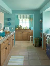 Color Combination With White Kitchen Green Kitchen Paint Dark Floor Kitchen Kitchen Color