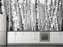 best 25 birch tree wallpaper ideas on pinterest tree wallpaper