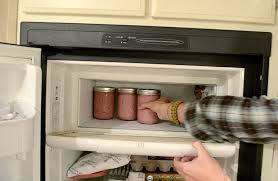 Grid Switches For Kitchen Appliances - off grid living appliances we got a chest freezer pure living