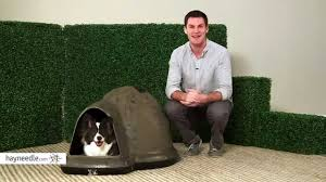Igloo Dog Houses Petmate Indigo Dog House Camo Brown Product Review Video Youtube