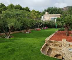 advantages of a native garden jardín sostenible