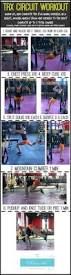 the best trx exercises the fitnessista