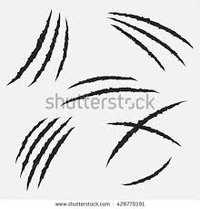 claw stock images royalty free images vectors