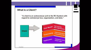 What Is In Law Unit What Is Client In Sap How To Install Sap Basis Software