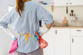 how to clean cupboards after pest house cleaning after pest service pest sg