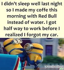 funny minions quotes 12 downloadfeast