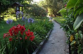 Tropische Pflanzen Im Garten Unterkunft In Arusha Meru Lodge Gallery Wohnen Arusha