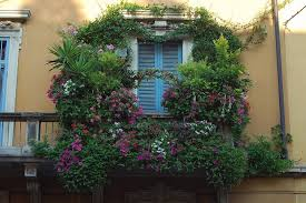 houses great balcony flowers beautiful house free desktop