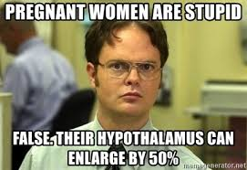 Pregnant Lady Meme - pregnant women are stupid false their hypothalamus can enlarge by