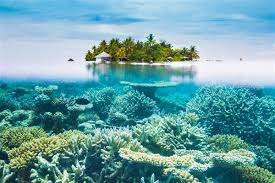 100 Most Beautiful Places In The Us The 8 Most Beautiful by Maldives Travel Lonely Planet