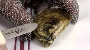 how to shuck an oyster the right way youtube