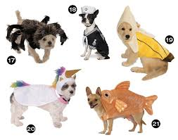 Halloween Dogs Costumes Halloween Hounds 26 Awesome Dog Costumes 2015 Dog Milk