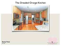 what is the best kitchen cabinet color to use when your kitchen is