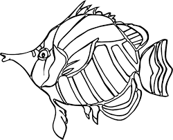 ancient angel fish coloring page wecoloringpage