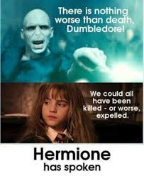 Hermione Granger Memes - 16 hermione memes only true harry potter fans will appreciate