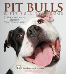 american pitbull terrier book pit bulls u0026 pit bull type dogs photo book by melissa mcdaniel