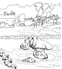 unique zoo coloring sheets book design kid 6663 unknown