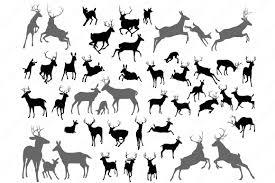buck and doe invitations deer head silhouettes clipart illustrations creative market