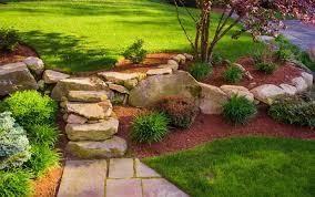 the best trees for small gardens bury hill topsoil u0026 logs blog