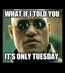 What If I Told You Meme - 80 funny tuesday memes collection funny memes