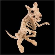 rat skeleton decoration halloween prop mad about horror