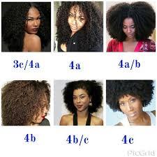 Hair Types by Hair Type Chart Caucasian Hair Type Chart Caucasian The Ultimate