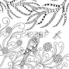 stylized parrot bird black white hand drawn doodle ethnic