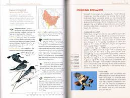 the birdchaser ngs guide to the backyard birds of north america