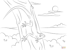 gecko on a tree coloring page free printable coloring pages