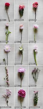 wedding flowers guide best 25 flower chart ideas on wedding flower guide