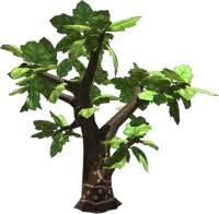 apple tree viva pinata wiki neoseeker
