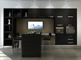 black kitchen cabinets u2014 all home design ideas