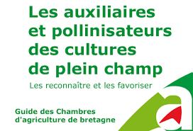 chambre d agriculture 04 apiculture guide auxiliaires et pollinisateurs des cultures de