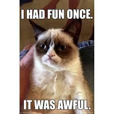 Meme Grumpy Cat - grumpy cat fun meme poster print walmart com