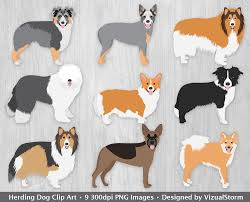 south australian german shepherd breeders herding dogs clipart digital dog graphics herding dog breeds
