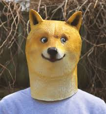 Doge Meme Pronunciation - 28 best doge images on pinterest doge funny stuff and funny doge