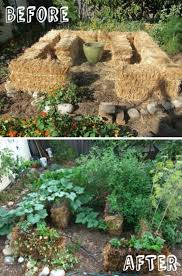 straw bale gardening conditioning instructions video
