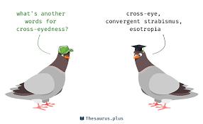 words cross eyedness and cross eye similar meaning