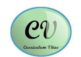 cv made professionally cv writing carlisle full time professional cv writer 500 great