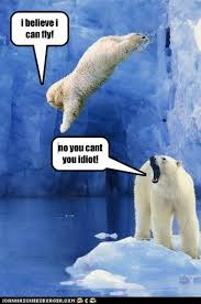 I Believe I Can Fly Meme - animal capshunz r kelly funny animal pictures with captions