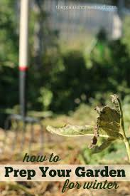 639 best gardening in fall u0026 winter images on pinterest flowers