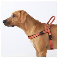 ikea dogs lurvig reflective harness black ikea
