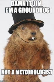 Groundhog Meme - damn it jim i m a groundhog not a meteorologist meme