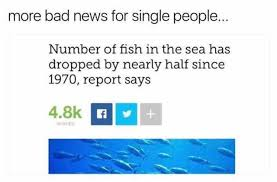 Fish In The Sea Meme - dopl3r com memes more bad news for single people number of