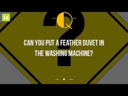 How To Wash Feather Duvet Can You Put A Feather Duvet In The Washing Machine Youtube
