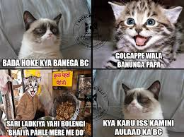 Mere Cat Meme - backchod billi latest collection of backchod billi memes trolls
