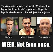 Not Even Once Meme - weed not even once imgur