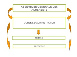 association bureau conseil d administration organes statutaires jpg