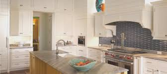 kitchen best kitchen cabinets tampa fl home design furniture