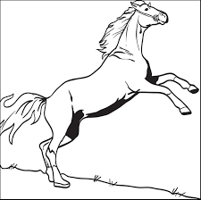 253 free animals coloring pages kids printable coloring